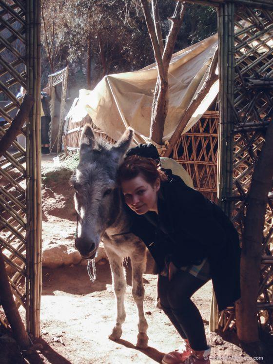 morocco donkey girl village