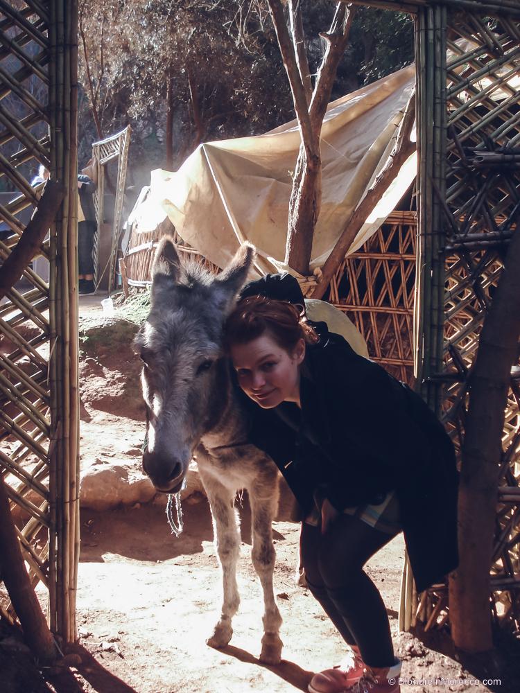 """Kelionė į Maroką –  egzotiškasis """"team building'as"""" (II dalis)"""