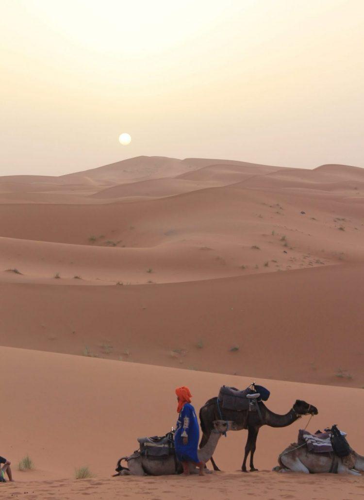 Mano kelionė į Sacharos dykumą! Įspūdžiai, foto, video!