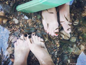fish spa toes massage morocco