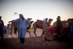 camels, desert, morocco, people, sand, sunset