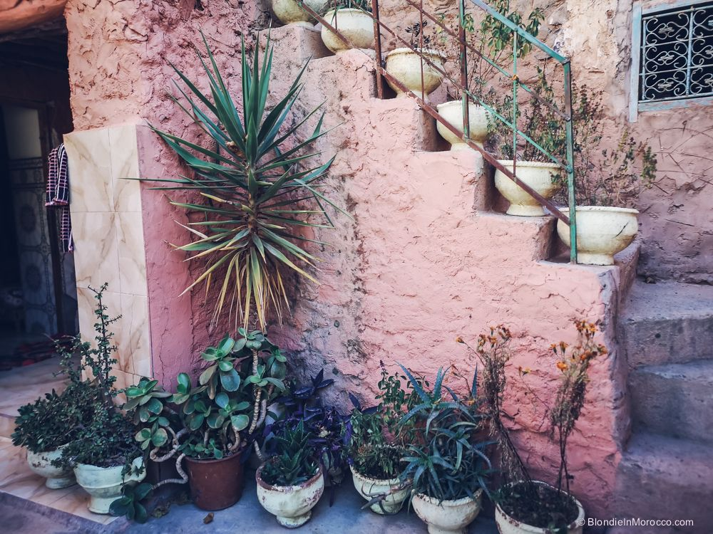 berber house, morocco, plants