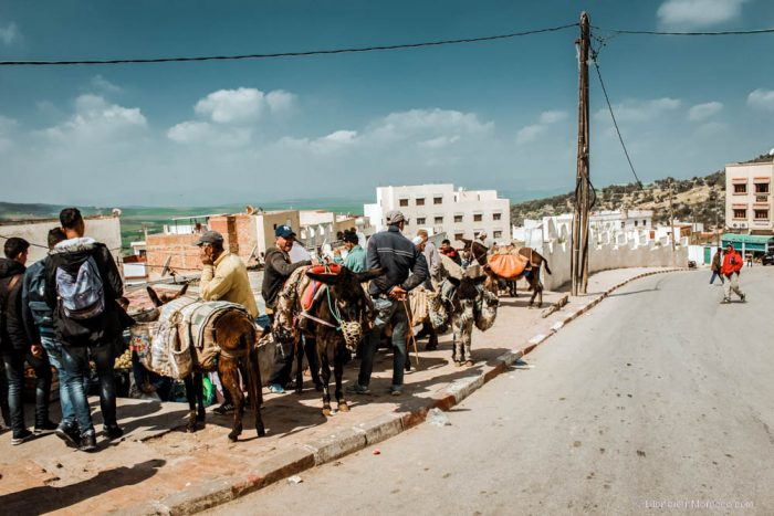Moulay Idriss donkeys morocco people