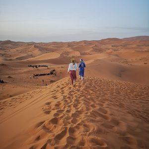 sahara desert camels sand dunes morocco berbers