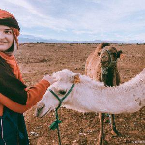 Imlil Morocco mountains High Atlas snow hiking camel