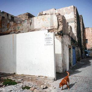 Synagogue jewish morocco essaouira